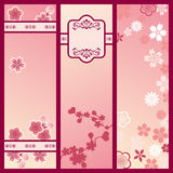 Cherry blossom banners. Illustration Royalty Free Stock Photos