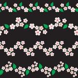 Cherry blossom borders Royalty Free Stock Photos