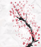 Cherry blossom branch. Painted in an oriental style with space for text stock illustration