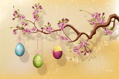 Cherry blossom branch with hanging Easter eggs in front of grunge wall Stock Photo