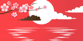 Cherry blossom branch on red. Sun setting on water. Stock Images