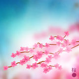 Cherry Blossom Branch Vector Stock Photo