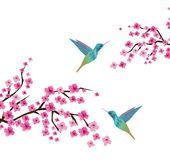 Cherry Blossom Branches With Birds Fotografia Stock