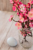 Cherry Blossom branches in glass jar vase with pastel blue Easte. R egg Stock Photo