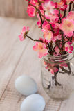 Cherry Blossom branches in glass jar vase with two pastel blue c. Cherry blossom branches in glass vase jar with two pastel blue Easter eggs Stock Image