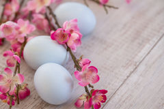 Cherry Blossom branches with three pastel blue colored Easter eg. Gs on wood background Royalty Free Stock Photos
