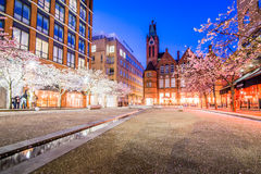 Cherry Blossom at Brindley Place, Ikon Gallery Stock Photo