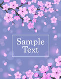 Cherry Blossom Card Stock Images