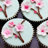 Cherry blossom cupcakes Stock Image