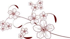 Cherry blossom design Stock Photography