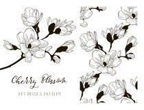 Cherry Blossom Design. Art Brush and Pattern. Vector Stock Image