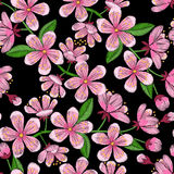 Cherry Blossom Embroidery Seamless Pattern Stock Images