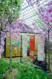 Cherry Blossom en el jardín por la bahía Fotografía de archivo