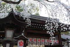 Cherry Blossom en la capilla de Kyoto Fotos de archivo