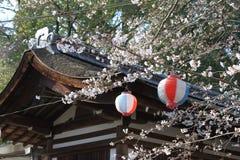 Cherry Blossom en la capilla de Kyoto Imágenes de archivo libres de regalías