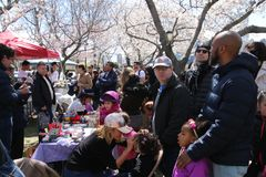 Cherry Blossom Festival images stock