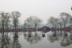Cherry blossom festival of Beijing Royalty Free Stock Images