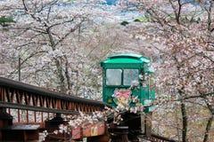 Cherry Blossom Festival no parque da ruína do castelo de Funaoka, Shibata, Miyagi, Tohoku, Japão em April12,2017: Carro da inclin Fotos de Stock Royalty Free
