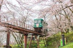 Cherry Blossom Festival no parque da ruína do castelo de Funaoka, Shibata, Miyagi, Tohoku, Japão em April12,2017: Carro da inclin Fotografia de Stock