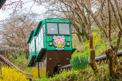 Cherry Blossom Festival no parque da ruína do castelo de Funaoka, Shibata, Miyagi, Tohoku, Japão em April12,2017: Carro da inclin Imagem de Stock