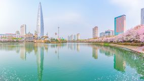 Cherry Blossom Festival på Seokchon sjön April 17 royaltyfri foto