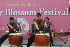 Cherry Blossom Festival - Taiko Drumming Stock Afbeelding