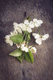 Cherry blossom flower on old wood table Stock Image
