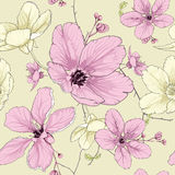 Cherry blossom flower. This is vector of flower pattern seamless Stock Photography