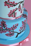 Cherry Blossom Fondant Covered Cake. Two tiered round fondant cake covered in hand-painted cherry blossoms royalty free stock image