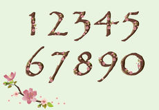 Cherry blossom font digits. Vector cherry blossom spring font just digits Royalty Free Stock Photo