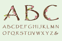 Cherry blossom font Stock Images