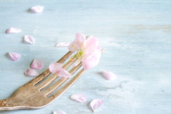 Cherry blossom on the fork food concept Royalty Free Stock Photography