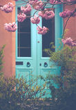 Cherry Blossom In Front of Turqoise Door. Pink Blossom with Turquoise Door in Background Royalty Free Stock Photography