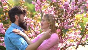 Cherry Blossom Garden Sexy Paare, die auf Frühlingsblumenhintergrund küssen Wiese voll des gelben L?wenzahns Verbinden Sie die He stock video