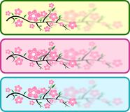 Cherry blossom headers. Abstract illustration of the cherry blossom banner or web header royalty free illustration