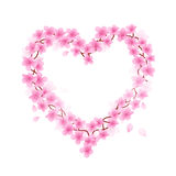 Cherry Blossom Heart Fotografie Stock