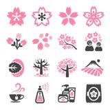 Cherry blossom icon. Set,vector and illustration royalty free illustration