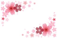 Cherry blossom illustration stock illustration