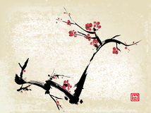 Cherry blossom ink painting Royalty Free Stock Images