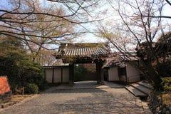 Cherry Blossom.Japan. The entrance of the  Ryoan-ji Temple,Kyoto,Japan Stock Photo