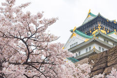Cherry blossom, Japan Osaka castle Royalty Free Stock Photos
