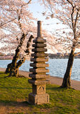 Cherry Blossom and Japanese Monument Stock Photography