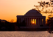 Cherry Blossom and Jefferson Memorial Stock Photos