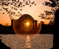 Cherry Blossom and Jefferson Memorial Royalty Free Stock Images