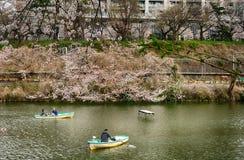 Cherry blossom at Kagurazaka, Tokyo, Japan Royalty Free Stock Images