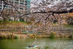 Cherry blossom at Kagurazaka, Tokyo, Japan Royalty Free Stock Photos