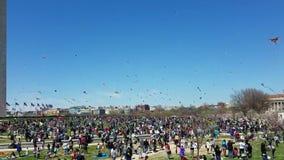 Cherry Blossom Kite Festival no National Mall em Washington, C.C. video estoque