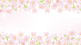 Cherry blossom line frame -EPS10 Royalty Free Stock Images