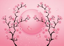 Cherry blossom motif template vector. Illustration Stock Photography