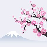 Cherry blossom on mountain landscape. Vector Illustration Stock Photo